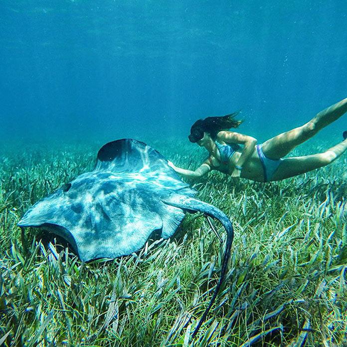 Девушка в бикини и скат под водой