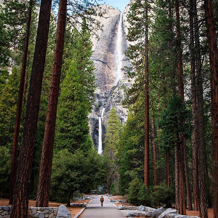 Горный водопад в простреле между соснами