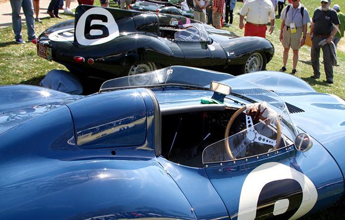 11 Jaguar D-Types on display including a number of Le Mans winners