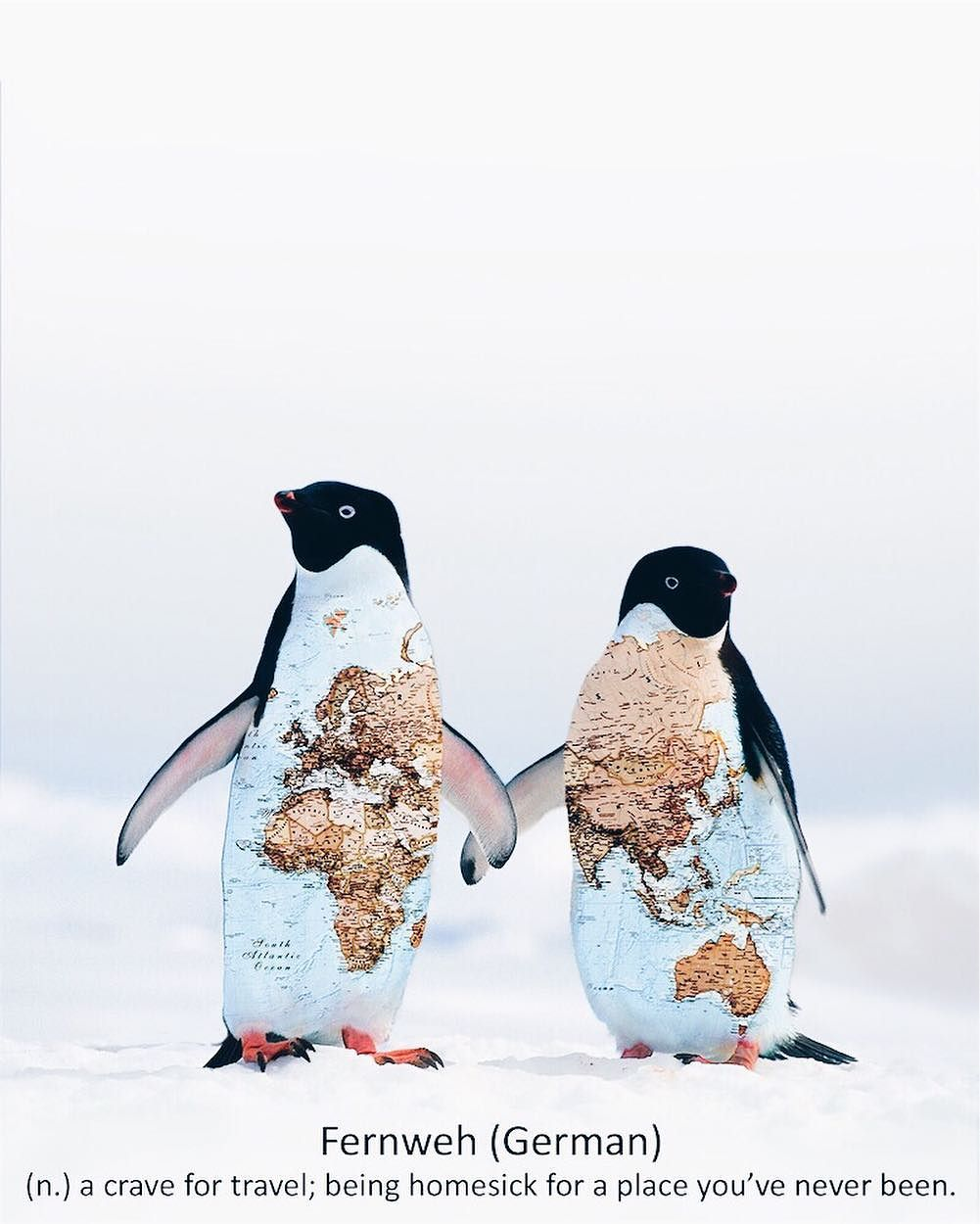Сюрреалистичные фотоколлажи Луизы Азеведо
