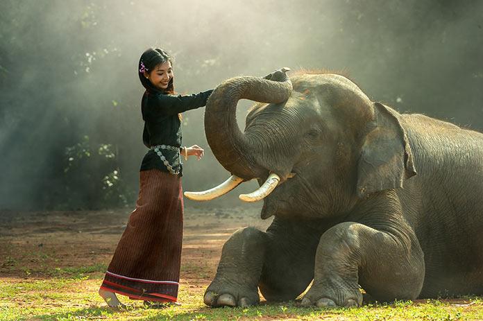 Камбоджа, девушка со слоном