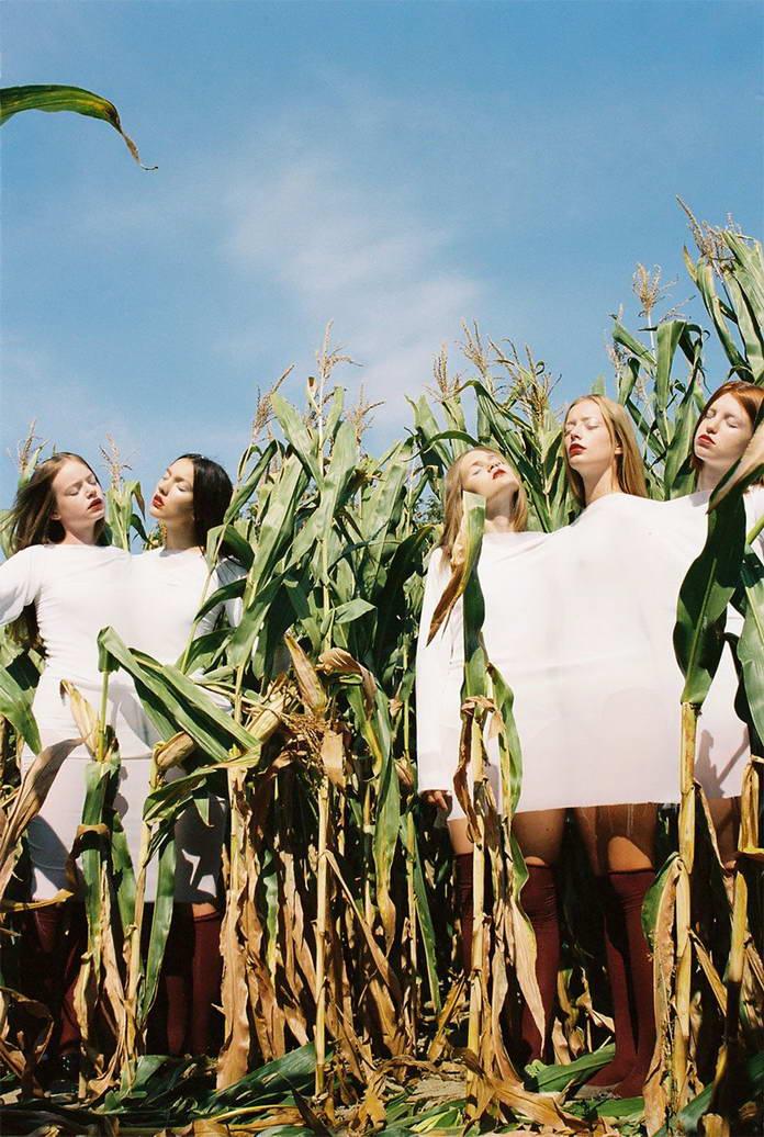 Михаль Пуделка, девушки в кукурузе, арт-фото