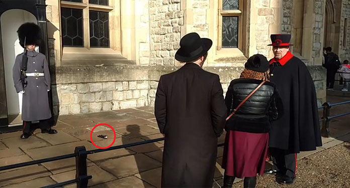 Туристка бросила перчатку в королевского гвардейца у лондонского Тауэра