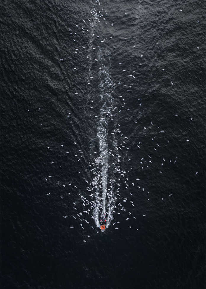 Комета в темноту. Фотографии-победители конкурса аэро-фото SkyPixel Photo Contest 2017