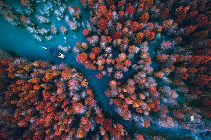 Хвост осени. Фотографии-победители конкурса аэро-фото SkyPixel Photo Contest 2017
