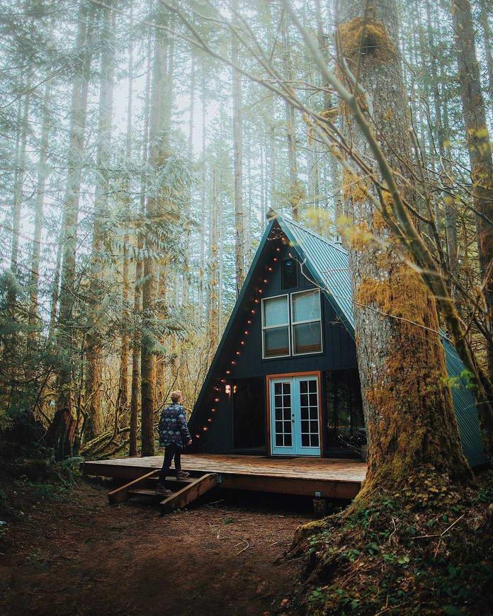 Охотничий домик в лесу, штат Вашингтон, путешествия фото