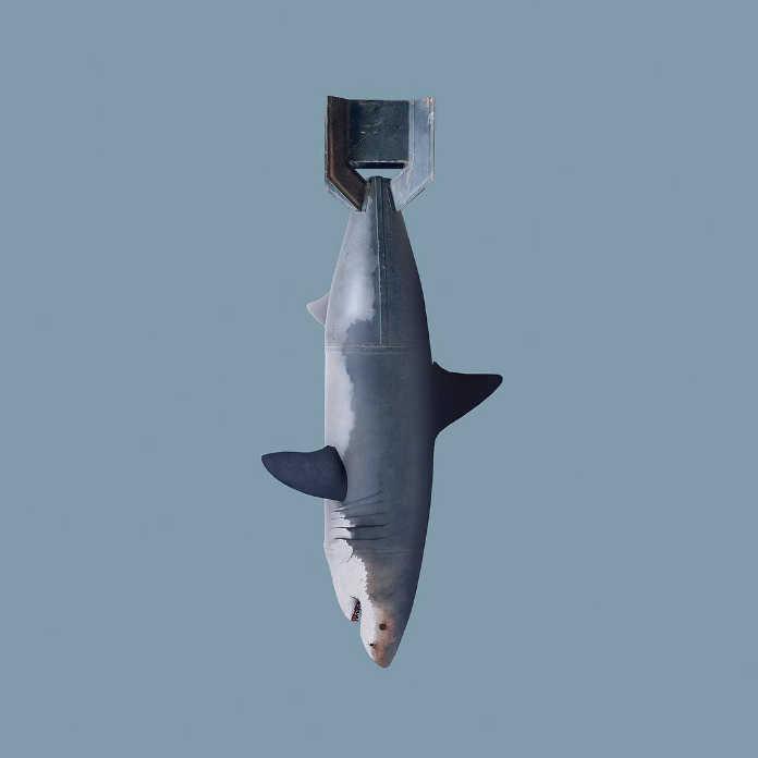 Акула-бомба. Игривые и яркие иллюстрации Хосе Наварро