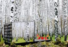 Исчезающий мини-дом в лесу