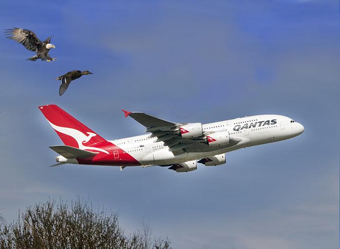 Quantas Airbus A380