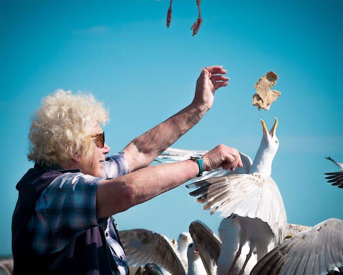 Фото-победитель. Птичница. Женщина кормит чаек. Победители конкурса трэвел-фотографии среди читателей The Guardian